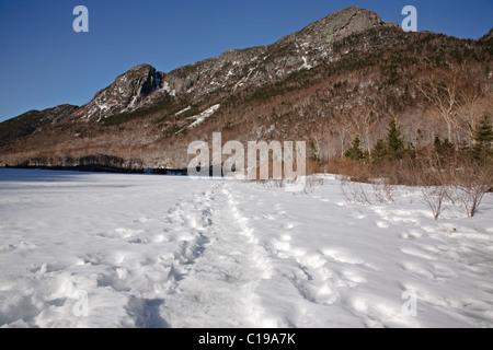 Franconia Notch State Park - Eagle Cliff à partir du profil Lake dans les Montagnes Blanches du New Hampshire, USA Banque D'Images