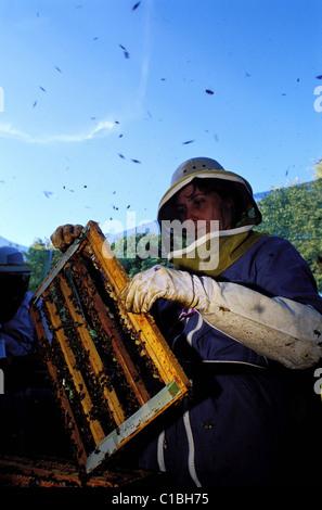 apiculteur tarn et garonne