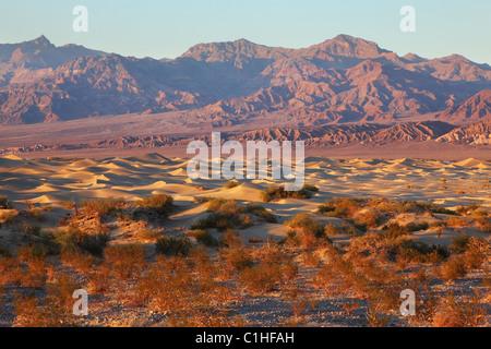 Une place unique dans la vallée de la mort - Mesquete Télévision dunes de sable Banque D'Images