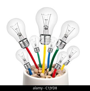 Ampoules de rechange de nouvelles idées - avec les câbles dans un pot de plus en plus isolé sur fond blanc Banque D'Images