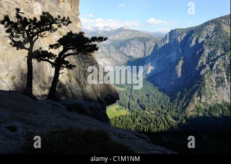 Vue vers le bas dans la vallée Yosemite Yosemite du haut de Falls, California, USA Banque D'Images