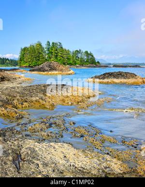 Rocky ocean shore dans le parc national Pacific Rim, Canada Banque D'Images