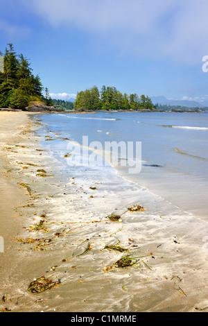 Long Beach dans le parc national Pacific Rim, l'île de Vancouver, Canada Banque D'Images