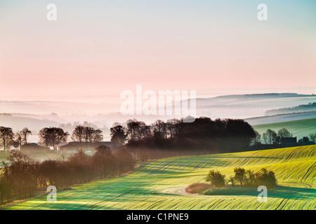 Un magnifique lever du soleil sur la Misty Marlborough Downs, dans le Wiltshire, England, UK Banque D'Images