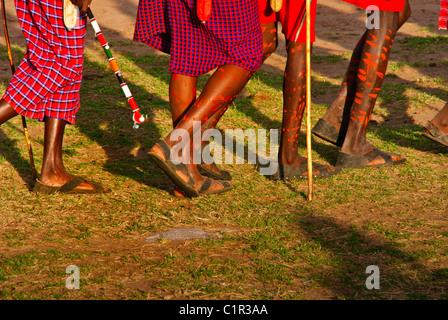 Décorées avec des hommes Masai jambes faisant une danse de bienvenue dans un village en dehors de la Masai Mara Banque D'Images