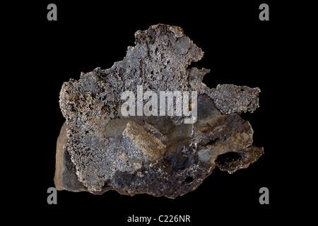 L'argent natif (Ag) en ardoise grauwacke - Cobalt Ontario Canada - Silverfields Mine - meilleur conducteur d'électricité Banque D'Images