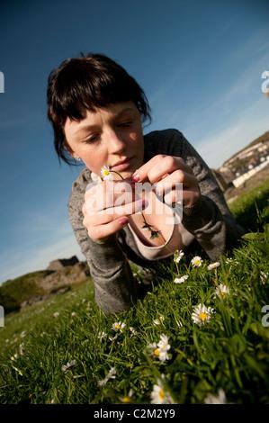 Une jeune femme allongée sur l'herbe, un jour ensoleillé de décisions en marguerites UK Banque D'Images
