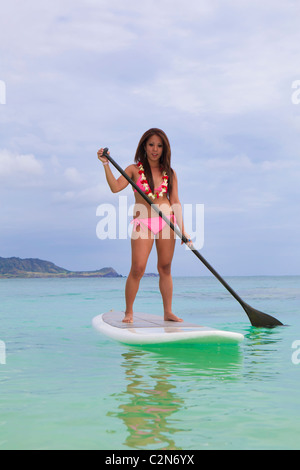 Young Asian Woman in pink bikini sur un paddle board à Hawaï Banque D'Images