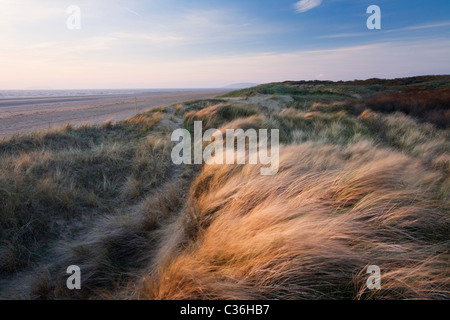 Berrow Brean Down Dunes avec au loin. Le Somerset. L'Angleterre. UK.
