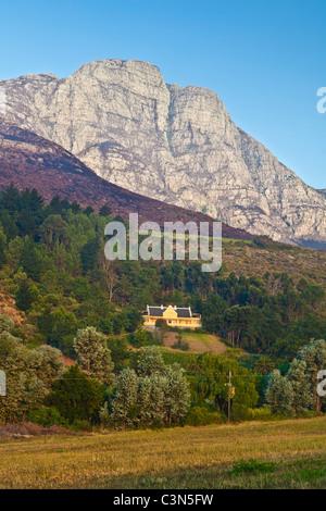 L'Afrique du Sud, Western Cape, près de Stellenbosch, Keermont Wine Estate et vignobles. Banque D'Images
