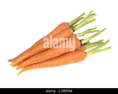 Bande de nettoyage douce Bébé végétarien carottes contre un fond blanc avec copie Espace, aucun peuple ou un chemin Banque D'Images