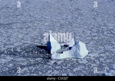 L'antarctique. Paysage. Vue aérienne de la banquise et d'icebergs flottants. Banque D'Images