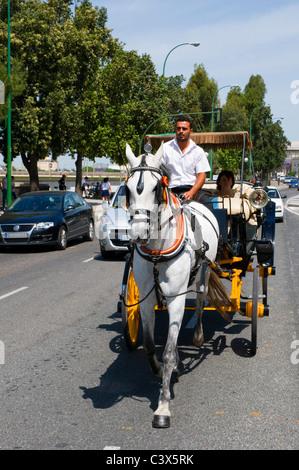 Cheval Tourisme et transport panier personnes grâce aux rues animées de Séville Banque D'Images