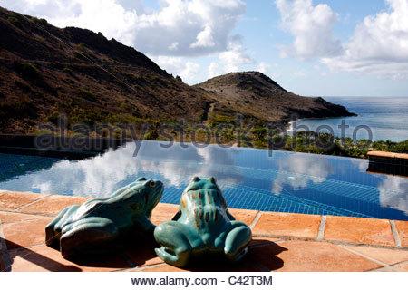 French West Indies, Guadeloupe, Saint Barthélémy, statues de grenouilles Banque D'Images