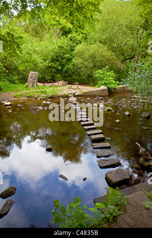 Pierres de gué sur la rivière de Rivelin Sheffield South Yorkshire, UK Banque D'Images