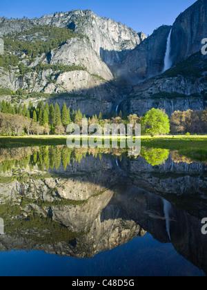 Matin voir de la partie supérieure et inférieure de Yosemite falls reflétée dans l'Étangs de printemps Banque D'Images