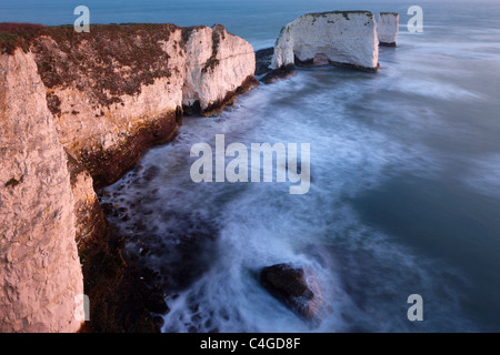 Old Harry Rocks, Handfast Point, Studland, Jurassic Coast, Dorset, Angleterre Banque D'Images