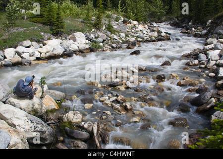 Young man photographing rapides sur un ruisseau glacé dans le parc national Banff, le long de la promenade des Glaciers Banque D'Images