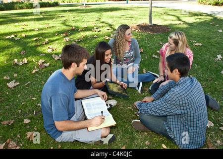 Conversation détendue la diversité multiculturelle multiculturelle diversifiée 15-18 ans groupe diversifié multi Banque D'Images