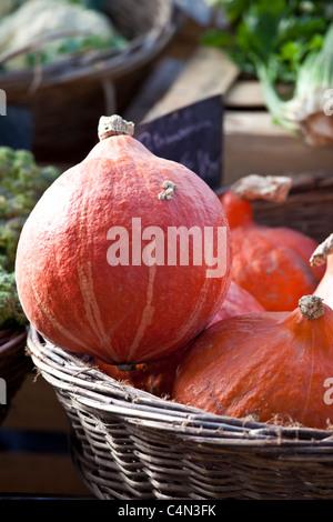 Courge potiron au marché alimentaire en France Banque D'Images