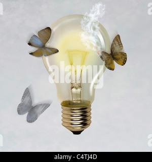 Papillons volant autour d'une ampoule allumée, l'aile de papillon brûlé Banque D'Images