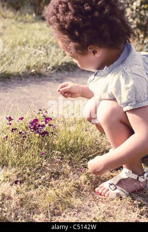 Petite fille à la recherche à un pétale dans sa main Banque D'Images