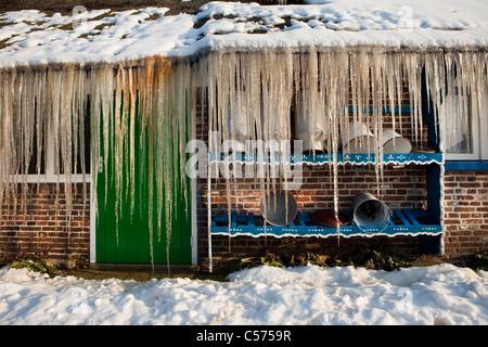 Les Pays-Bas, Staphorst, hiver, les glaçons sur le toit de la ferme. Banque D'Images