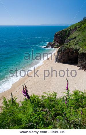 Landcombe Cove, près de Dartmouth, South Hams, Devon, Angleterre. Banque D'Images