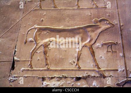 Temple de Seti I (13ème siècle avant J.-C.), Abydos, Egypte Banque D'Images