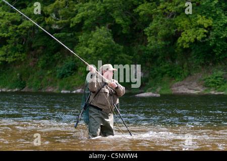 Fisherman fly la pêche du saumon sur la rivière Tweed, Scottish Borders, Scotland Banque D'Images