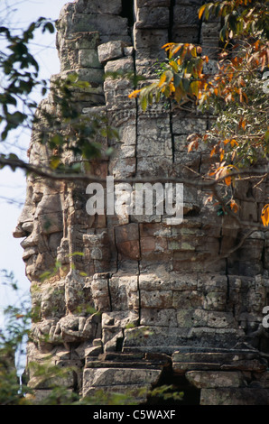 Cambodge, Angkor, Siem Reap, Ta Prohm temple Banque D'Images