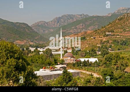 Mosquée du Sud Turquie bananier bananes agricole agriculteur arbres entre Antalya et Alanya Banque D'Images