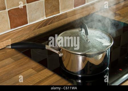 Acier inoxydable casserole d'eau bouillante, avec couvercle en verre, sur une plaque à induction. Banque D'Images