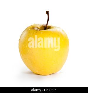 Un cas isolé de pomme Golden Delicious avec de l'eau perle sur fond blanc Banque D'Images