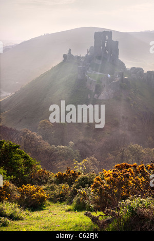 Lever du soleil à Corfe Castle dans le Dorset, en Angleterre. Banque D'Images