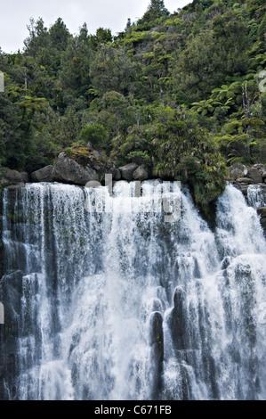La belle Marokopa Tawarau tombe dans la forêt près de Te Anga Waikato Waitomo Île du Nord Nouvelle-Zélande NZ Banque D'Images