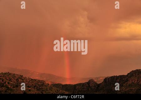 Un arc-en-ciel au coucher du soleil au cours d'une tempête de mousson dans les montagnes Santa Catalina, Coronado National Forest, Tucson, Arizona, USA.