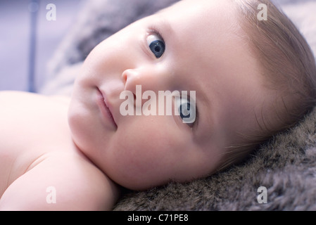 Baby Boy, portrait Banque D'Images