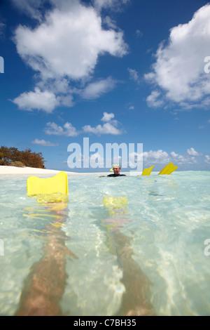Snorkeler avec palmes près de l'île Heron partie orientale fait partie de l'Capricornia Cays National Park Great Banque D'Images