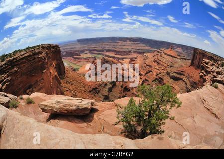 Fisheye panoramique vue de falaises érodées et autres formations d'un oublier dans Dead Horse Point State Park près Banque D'Images