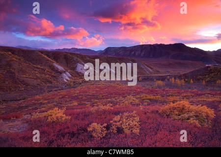 Coucher du soleil à col de sable, le parc national Denali, en Alaska. Banque D'Images