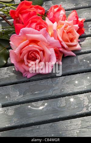 Les ROSES ROUGES ET ROSES SUR LA TABLE DE JARDIN EN LATTES Banque D'Images