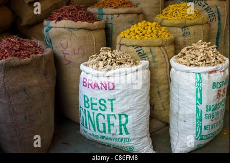 Piments rouges, le curcuma et le gingembre en vente à Khari Baoli spice aliments séchés et marché, Old Delhi, Inde Banque D'Images