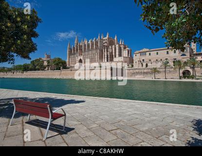 La cathédrale de Palma La Seu et Parc de la Mar centre historique de la ville vu de l'ensemble banc inlet Majorque Banque D'Images