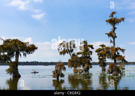 Kayak sur le lac Martin dans la Louisiane bayoux près de Breaux Bridge, pays Cajun, Louisiane, Etats-Unis Banque D'Images