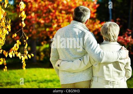 Vue arrière du de l'homme et de la femme de prendre une marche dans le parc en automne Banque D'Images