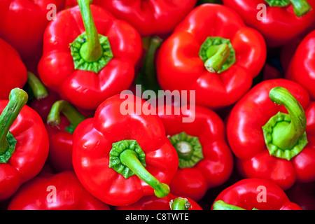 Poivron rouge at a market stall dans Cannobio, Italie Banque D'Images