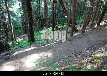 Du vélo de montagne sur la piste de gagnant d'Alyeska Resort, près de Big Sur, Southcentral Alaska, l'été Banque D'Images
