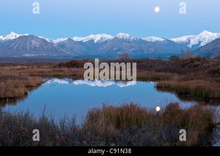 La pleine lune se reflète sur la surface d'un petit étang après le coucher du soleil dans le Parc National Denali Banque D'Images