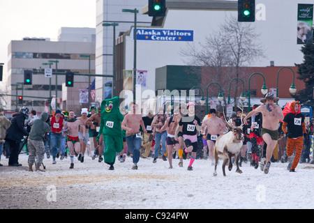 L'exécution des rennes au cours de la fourrure 2011 festival Rondy sur la 4 e Avenue à Anchorage, Southcentral Alaska, Banque D'Images